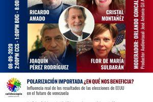 ELECCIONES USA y VENEZUELA: Polarización importada